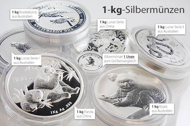 1 Kilo Silberm 252 Nzen Welche Kaufen